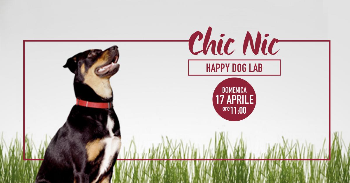 Happy-Dog-1