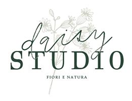 logo-daisy-studio-web