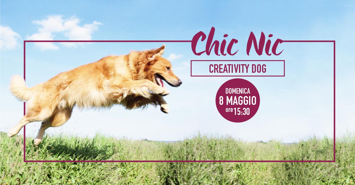 CreativityDog
