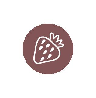 icons-chicnic-01-food-green