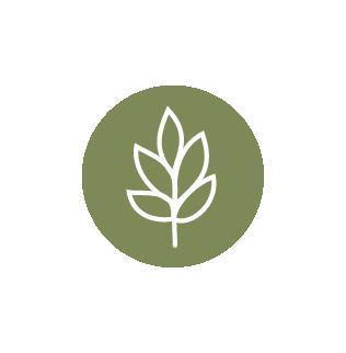 icons-chicnic-04-ecosostenibilita